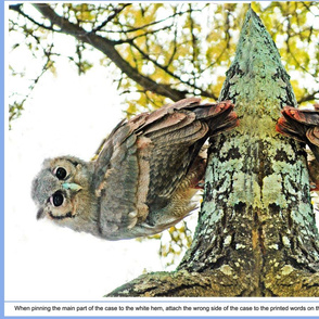 3 Verreaux owl pillowcase