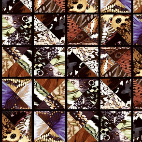 How_Butterflies_Accessorize_7_black_and_warm_russet_graphic