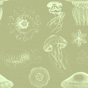Jellyfish Green