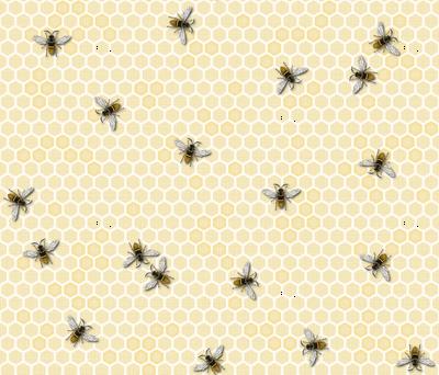 Honey, a Bee Farm!