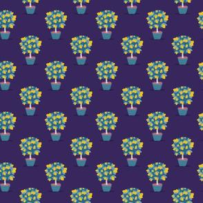 Lemon tree on purple