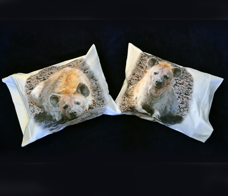 Three HYENA pillowcases