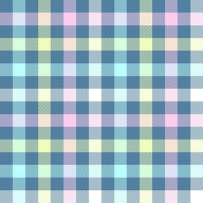 blue rainbow gingham