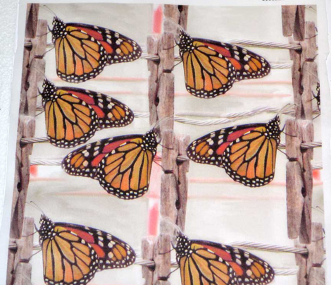 Freshly Washed Butterflies