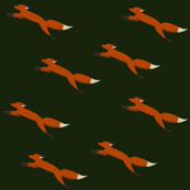 Fox Run on Forest Green