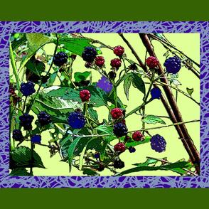 blackberries scarf