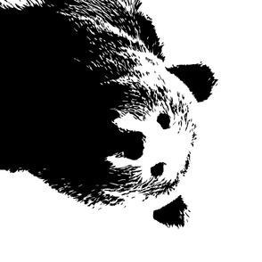 "Black Bear // 1 yard cut (42"" width)"