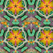 Kaleidoscope Happiness