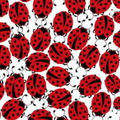 new_ladybugs_stars_pattern
