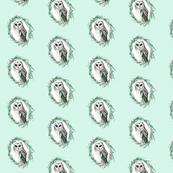 Sooty Owl Minty