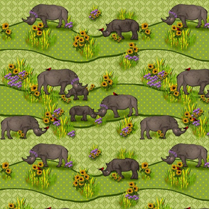 Romping Rhinos