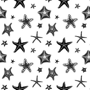 Starfish in Black & White