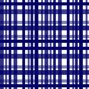 Vibrant Plaid Navy Blue & White