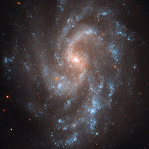 HD Hubble's View of NGC 5584 (2011-03-14)