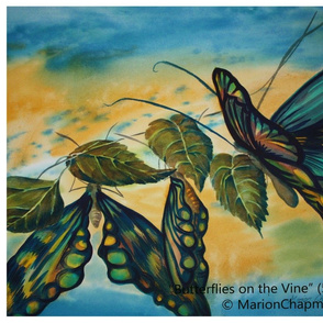 Butterflies_on_the_Vine_wc_56x76cm