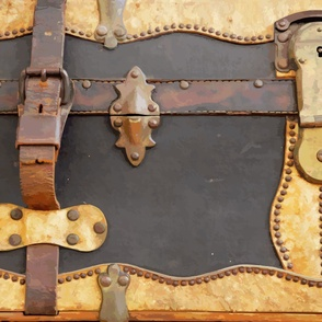 Steampunk Luggage 56""