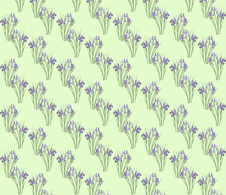 Irises on Green (version 1)