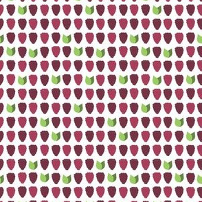 marionberrysigfab