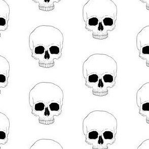 Skull - no jaw - white