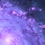Stellar Genesis in M83