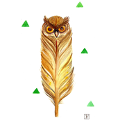 owl and feather