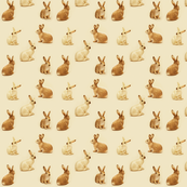 Bunnies in Caramel