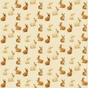 Bunnies in Caramel