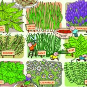 Rherb-garden_shop_thumb
