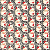 Santa Zebra Christmas! 2014