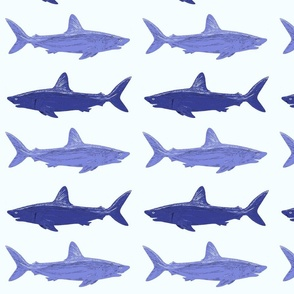 gray and blue sharks