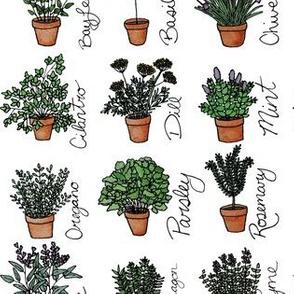 Teracotta Herb Garden