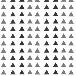 triangel bw