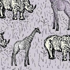 Family Rhinocerotidae.