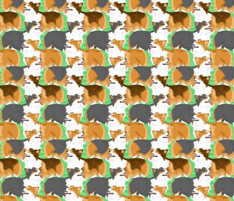 Fluffy Pems posing - green
