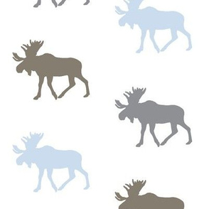Multi Moose // Blue/Brown/Grey