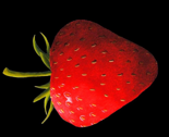 Rstrawberry_black_side_thumb