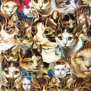 clowder of crazy cat heads fabric