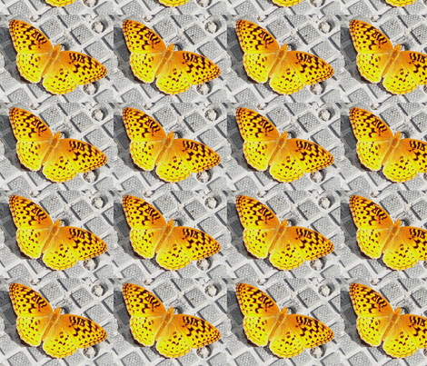 Great_Spangled_Fritillary_butterfly fabric by beckywall on Spoonflower - custom fabric