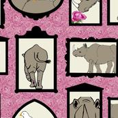 Rhinoceros Portrait Gallery