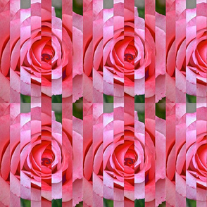Rose Sliced