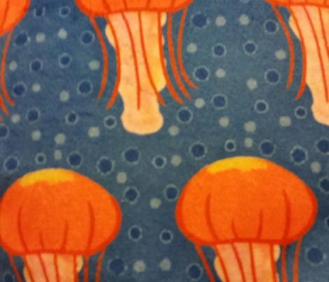 Box Jellyfish