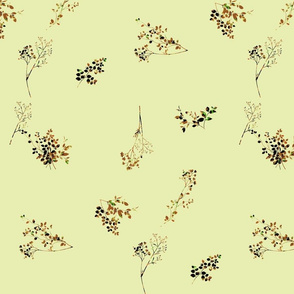 Herb Garden Produce