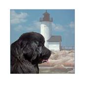newfy_lighthouse_quiltblocks
