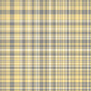 Gray & Yellow Plaid