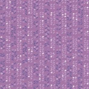 Lavender ...