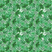 Camomoto Green
