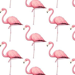 Single pink Flamingo on White