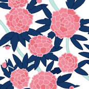 Paeonia in Pink and Navy