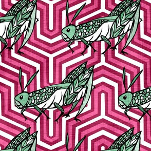 Grasshoppers on Pink Chevrons