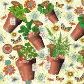 Rmon_petit_jardin_d_herbes_aromatiques_shop_thumb